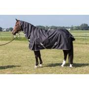 Harrys Horse Harry's Horse Regendeken Thor met hals