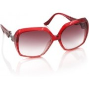 Moschino Over-sized Sunglasses(Violet)