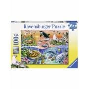 Puzzle Minunatul Ocean, 100 Piese Ravensburger