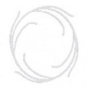 Disc de centrare pentru cartuse filtrante NI-412-CENT_K
