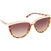 Polaroid Cat-eye Sunglasses(Brown)