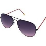 Ewan Aviator Sunglasses(Violet)