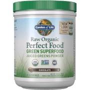 Garden of Life Superaliments Raw Organic Perfect Food Green - Chocolat - 285g