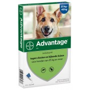 Advantage Hond 400