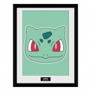 Pokémon, Tavla - Bulbasaur Face