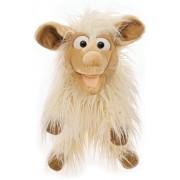 Matthies Lucy, das Schaf