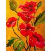 Tablou Canvas Maci rosii 1267 60 x 80 cm Rama lemn Multicolor