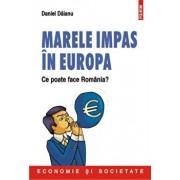 Marele impas in Europa. Ce poate face Romania'/Daniel Daianu