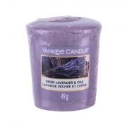 Yankee Candle Dried Lavender & Oak Duftkerze 49 g