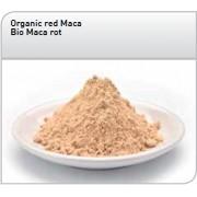 Maca rouge Bio en poudre