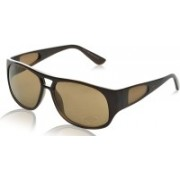 Tod's Rectangular Sunglasses(Brown)