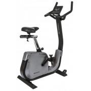 Bicicleta ergometrica Toorx BRX 3000