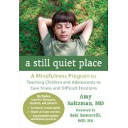 A Still Quiet Place: A Mindfulness Program for Teaching Children and Adolescents to Ease Stress and Difficult Emotions, Paperback