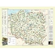 Zoogeografia Polski - plansza