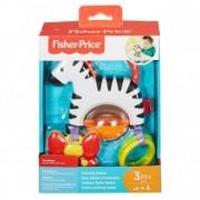 Fisher Price Jucarie Zebra cu activitati FGJ11
