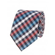 Blue & Red Check Design Tie