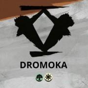 Dromoka Dragon Clan: Prerelease Kit (6 Packs) Dragons of Tarkir - Magic the Gathering - MTG Trading