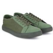 Steve Madden Sneakers For Men(Olive)