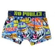 boxer no publik motif tiger