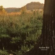 Noble Beast [LP] - VINYL
