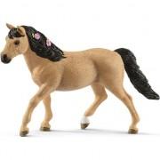 Pony mare Conemara