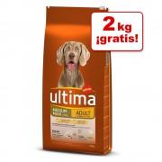 Ultima de Affinity pienso en oferta: hasta 2 kg ¡gratis! - Medium-Maxi Senior (10 + 2 kg)