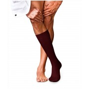 Falke Kniekousen No. 13 Finest Piuma Cotton Knee High Barolo / male