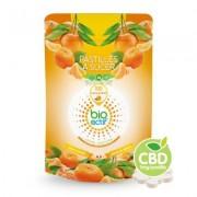 BioActif Pastilles de CBD à la Mandarine (100 x 1 mg) (Bioactif)