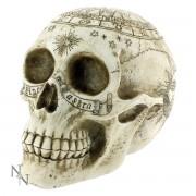 décoration Astrologique Skull - D1418D5