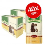 Икономична опаковка James Wellbeloved в паучове 40 x 150 г - Senior: пуешко и ориз