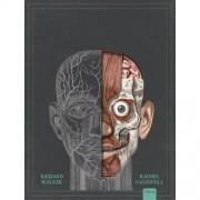 Het menselijk lichaam ( Pop-up) - Richard Walker