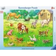 Puzzle Animalele Mele 11 Piese