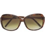 Aeropostale Retro Square Sunglasses(Brown)
