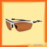 Arctica S-172 C Sunglasses