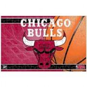 NBA Chicago Bulls Puzzle in Box (150 Piece)