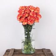 Radiant - Flores a domicilio