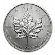 Royal Canadian Mint Maple Leaf palladiová mince 1 Oz 2005