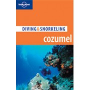 Duikgids Cozumel: Diving & Snorkeling Guide | Lonely Planet