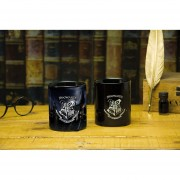 TAZA TERMOSENSIBLE HOGWARTS DE HARRY POTTER MAGICA ORIGINAL