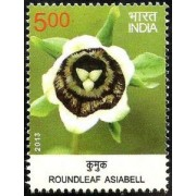 Wild Flowers of India - Roundleaf Asiabell Wild Flower, Roundleaf Asiabell, Codonopsis rotundifolia, Botany Rs. 5
