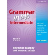 Grammar in Use Intermediate: Self-Study Reference and Practice for Students of North American English, Paperback