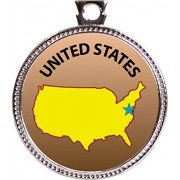 United States Award, 1 inch dia Silver Medal 'State Studies Collection' by Keepsake Awards
