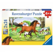 Puzzle 2 in 1 - Lumea cailor, 48 piese