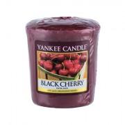 Yankee Candle Black Cherry Duftkerze 49 g