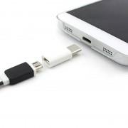 tiendatec MINI CONVERSOR MICROUSB A USB 3.1 TIPO C (BLANCO)