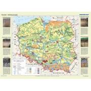 Polska - rodzaje gleb - plansza (duża)