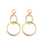 Fashionize Oorbellen Ringen Goud