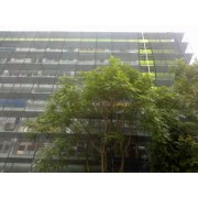 Plasa protectie schela 1.5X50 m, grad umbrire 80%, verde