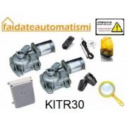 KIT AUTOMAZIONE DUE ANTE BATTENTI 230V AUTOMAZIONE INTERRATA x ANTE SINO A 4mt