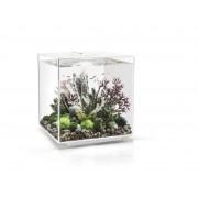 biOrb akvárium CUBE MCR 30 bílá